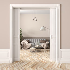 Pocket door kit in living space